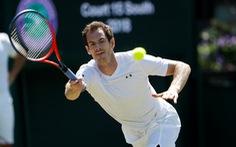 Andy Murray không tham dự Wimbledon 2018