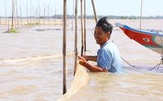 11 thủy điện từ Trung Quốc làm giảm 50% phù sa lưu vực sông Mekong