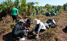 Diễn đàn ASEP 2018: Bài học từ rừng nhiệt đới