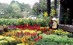 TP.HCM: Có 128 điểm chợ hoa Tết