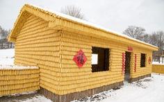 Ngôi nhà xây từ 20.000 bắp ngô