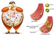 Tác hại do tăng mỡ máu và cách kiểm soát