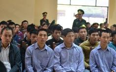 Tòa quân sự xét xử 21 người phá rừng pơ mu ở Quảng Nam