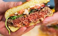 Bánh burger làm từ thực vật - giải pháp cho vấn đề môi trường