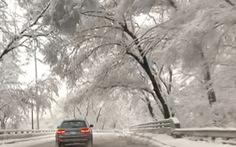 Bảy người thiệt mạng vì bão tuyết ở Mỹ