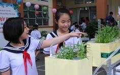 Học sinh tiểu học thiết kế vườn rau sạch trong trường