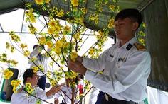 Nghệ sĩ cùng chiến sĩ hải quân gói bánh chưng, trang trí mai vàng đón Tết