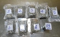 Bắt giữ 2,3kg ma túy vận chuyển qua sân bay Tân Sơn Nhất