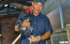 Gà Đông Tảo tặng tết giá 2,5-4 triệu đồng/ con