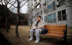 Người Hàn thà nuôi thú cưng hơn có con