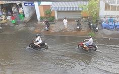 Nước sông Mekong cao bất thường, nhiều nơi ngập