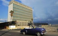 'Tấn công âm thanh' tại Cuba có thể là do dế gáy?