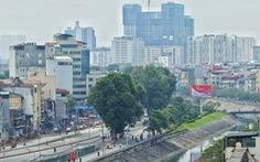 Sau đường Láng, Hà Nội sẽ lại tiếp tục chặt, chuyển cây xanh
