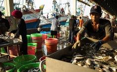 Thái Lan mừng vì thoát thẻ vàng về khai thác hải sản bất hợp pháp