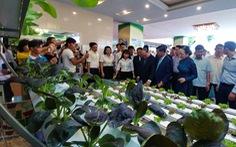 10 năm xây dựng nông thôn mới, nông dân Hải Phòng thu bình quân 55 triệu đồng/năm