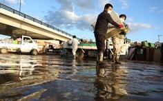 Đã 4 ngày sau bão Hagibis, Nhật vẫn phải nỗ lực cứu hộ ngày đêm