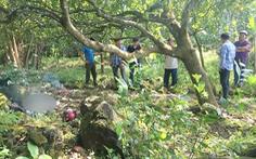 Video: Một thanh niên 'cò' đất chết bất thường trong vườn điều