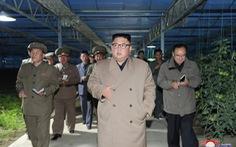 Ông Kim Jong Un thị sát nhà kính trồng rau trong bối cảnh cả nước thiếu lương thực