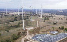 Thành phố Sydney cam kết sử dụng 100% nguồn năng lượng tái tạo