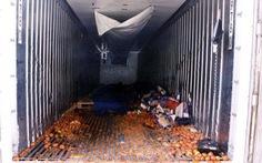 Container, 'địa ngục trần gian' chở người nhập cư sang Anh