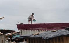 Hình ảnh dân vùng dự báo bão số 5 đổ bộ tất bật ứng phó