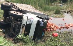 Video: Va chạm với ôtô, xe tải chở gạch lật nhào xuống mương