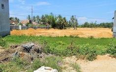 Sai phạm trong quản lý đất đai, nhiều cán bộ Bình Định bị truy tố và kiểm điểm