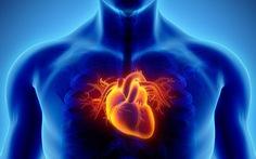 Tiên đoán khả năng nhồi máu cơ tim qua ảnh chụp tim