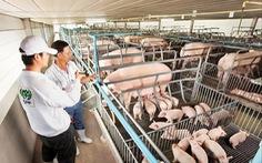 Nông nghiệp châu Á 'cầu cứu' công nghệ