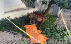 Người đàn ông tử vong dưới chân chung cư Ehome 4 nghi nhảy lầu tự tử