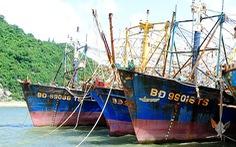 28 tàu cá Nghị định 67 bị bảo hiểm 'chê'