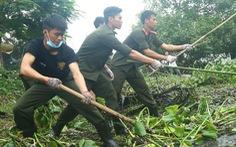 'Phong trào tình nguyện trở thành phẩm chất, đặc trưng của thanh niên'
