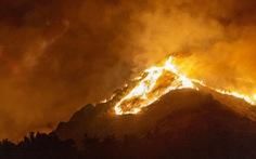 Hơn 11.000 nhà khoa học tuyên bố 'tình trạng khẩn cấp khí hậu'