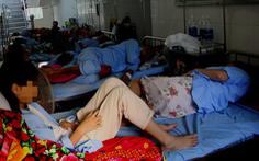 Quảng Bình: gần 8.000 người mắc sốt xuất huyết