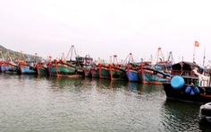 700 tàu cá xa bờ các tỉnh về trú cảng Hòn Rớ trước bão số 6