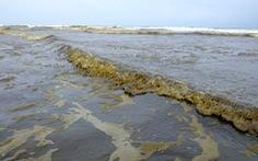 Nước biển đen như cà phê ở Dung Quất có nồng độ pH vượt mức cho phép