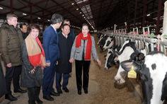 Chủ tịch Quốc hội thăm dự án sữa của doanh nghiệp Việt ở Nga