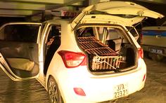 Video: Thuê taxi chở gấu nặng 140kg đi bán