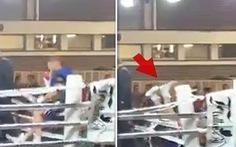 Video: Tai nạn kỳ dị, võ sĩ cao 2,07m bật ngửa khỏi sàn đấu và bỏ cuộc vì chấn thương
