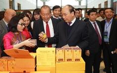 Thủ tướng Nguyễn Xuân Phúc: 'Tôi nhận nhiều tin nhắn nói cấp chuyên viên nhũng nhiễu lắm'