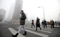 Các thành phố trên thế giới xử lý ô nhiễm không khí ra sao?