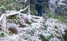 Nhiều vùng núi cao Nghệ An 0 độ C, băng giá phủ cây cối