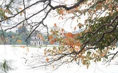 Hà Nội đẹp dịu dàng trong mùa cây thay lá