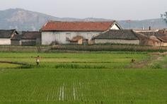 Báo Hàn: 'Đổi mới' của Việt Nam là điểm sáng tại thượng đỉnh