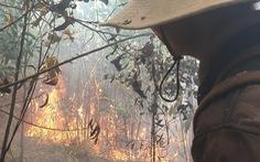 Huy động hơn 100 người chữa cháy rừng