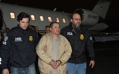 Trùm ma túy El Chapo từng bày kế để có 'vitamin gái trẻ'