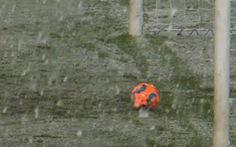 Video tuyết 'cứu thua' cho Leverkusen ở Bundesliga
