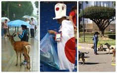 Những bức ảnh 'chúng ta vẫn còn có thể tin vào con người'