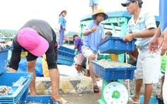 Masan Phú Quốc nói dự thảo tiêu chuẩn nước mắm bị 'tuýt còi'... khả thi