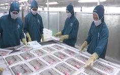 Chi phí nuôi tôm của Việt Nam thuộc hàng cao nhất thế giới